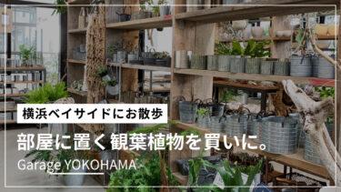 【ガレージ 横浜】観葉植物好きにはたまらない!魅力をまとめてみた。