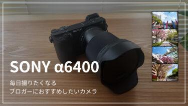 【α6400レビュー】カメラ初心者のブロガーがα6400を選んだ理由